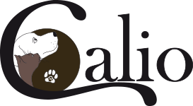 Education canine | Calio - Strasbourg et environs